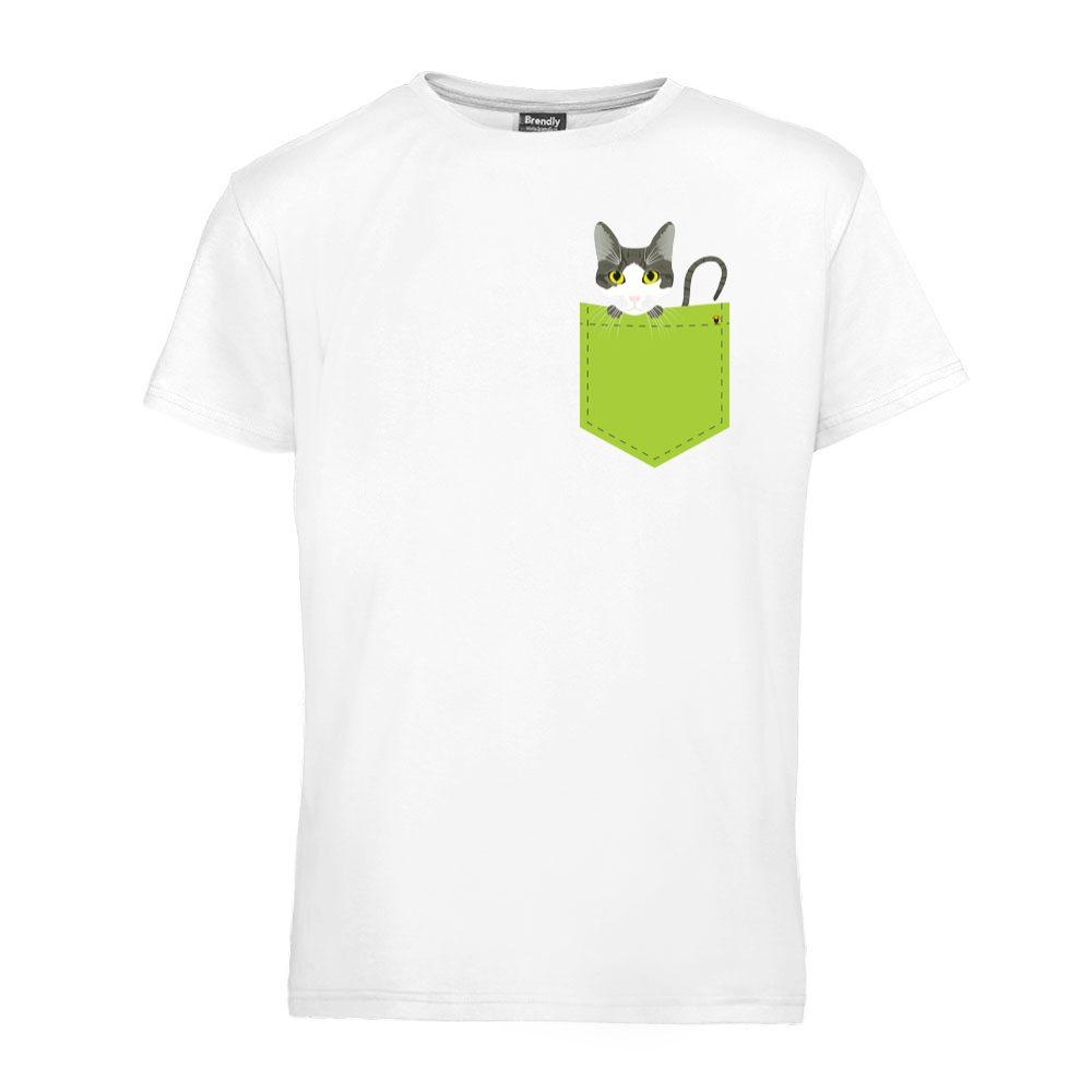 Domaća mačka u džepu